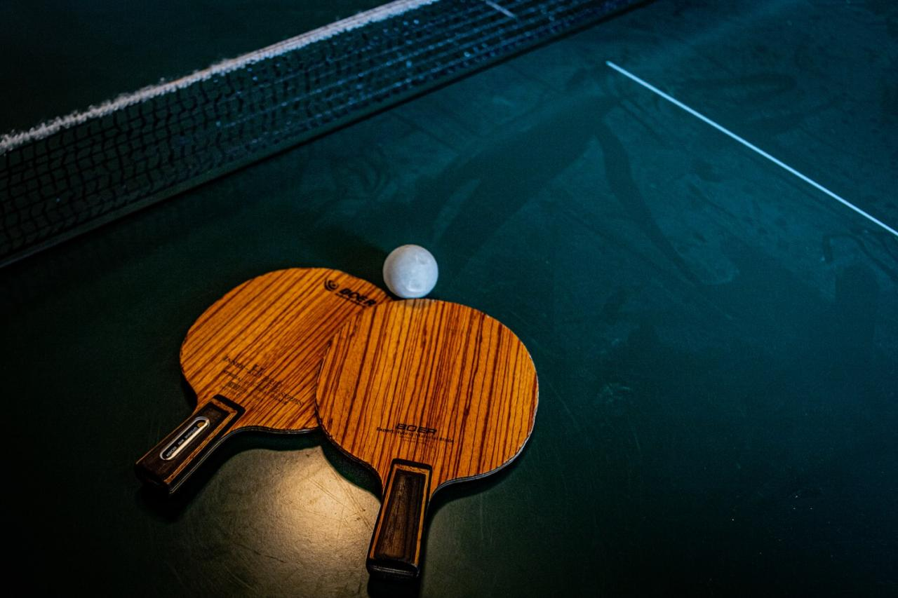 Creative Ping Pong Table Games That Aren't Ping Pong - WhatLauraLoves